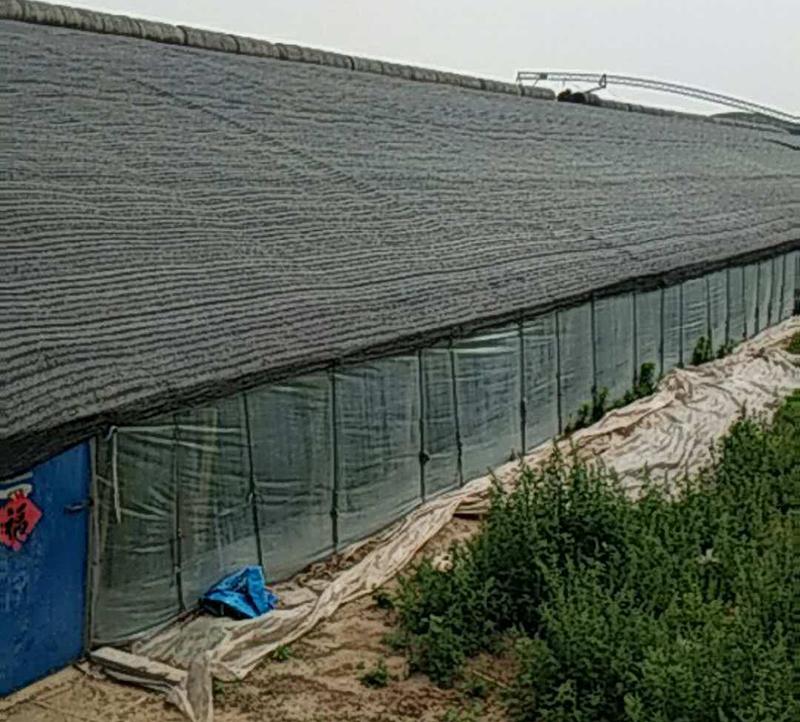 大棚遮阳网